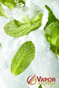 Flavor Of The Week: Intense Mint